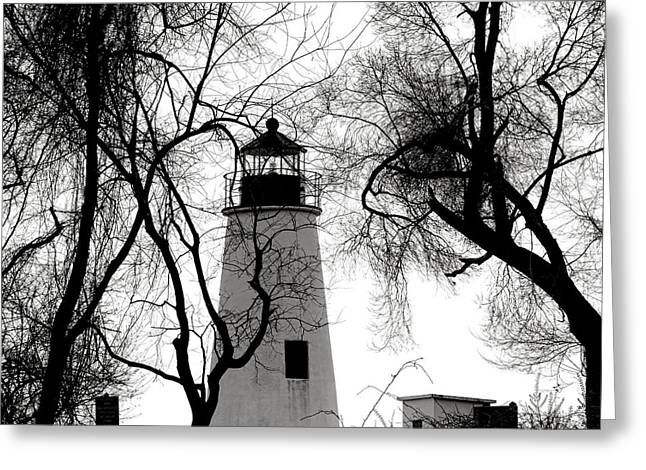 Turkey Point Lighthouse Greeting Card by Olivier Le Queinec