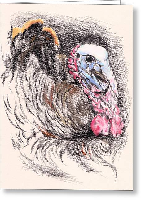 Turkey Tom Greeting Card