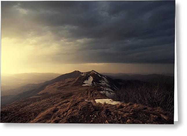 Turn To Light Greeting Card by Michal Karcz