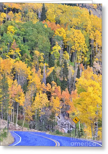 Turning Aspens On The Way To Bear Lake - Rocky Mountain National Park Estespark Colorado Greeting Card by Silvio Ligutti