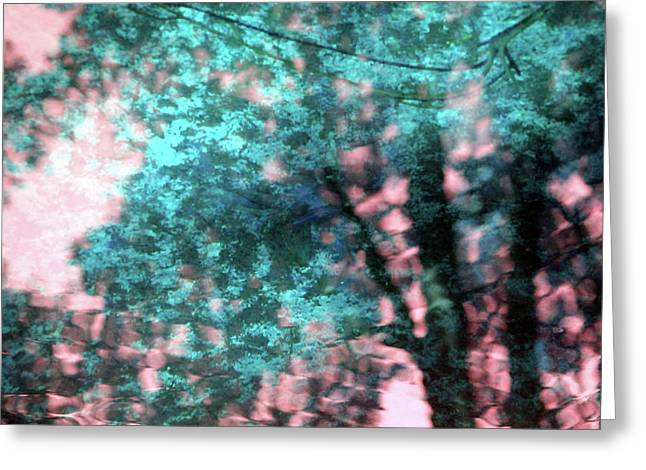 Turquoise Forest Greeting Card by Carolyn Stagger Cokley