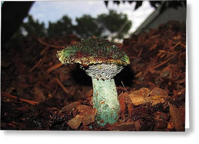 Turquoise Mushroom Greeting Card