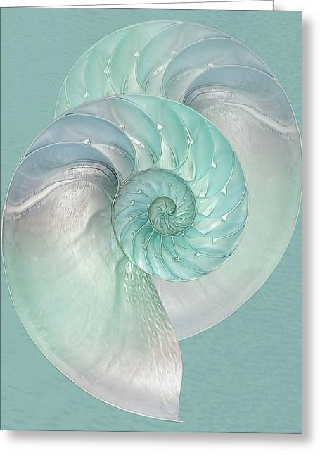 Turquoise Nautilus Pair Greeting Card by Gill Billington