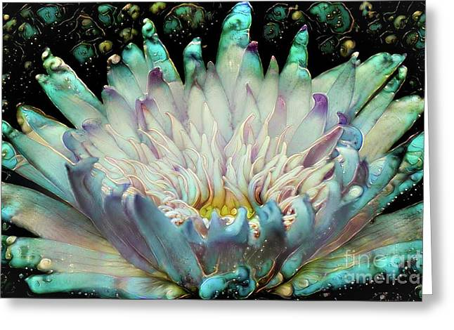 Turquoise Waterlilies 5 Greeting Card by Amy Cicconi