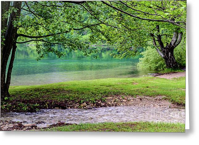 Turquoise Zen - Plitvice Lakes National Park, Croatia Greeting Card