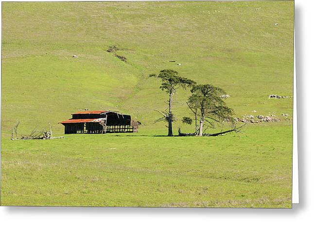 Greeting Card featuring the photograph Turri Road - San Luis Obispo Ca by Art Block Collections
