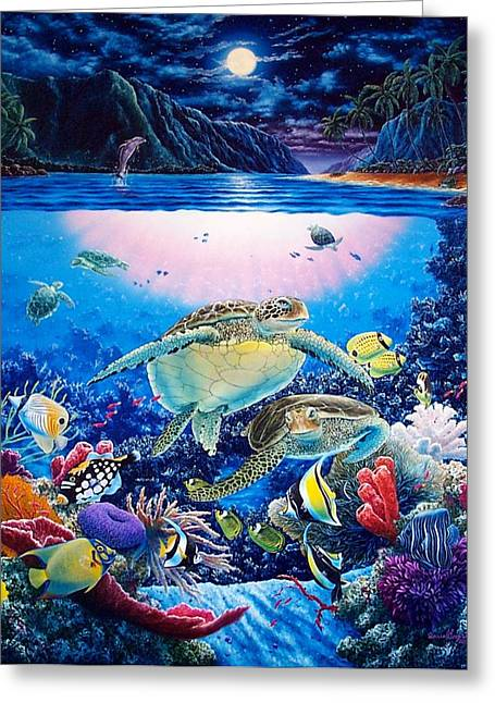 Turtle Bay Greeting Card by Daniel Bergren