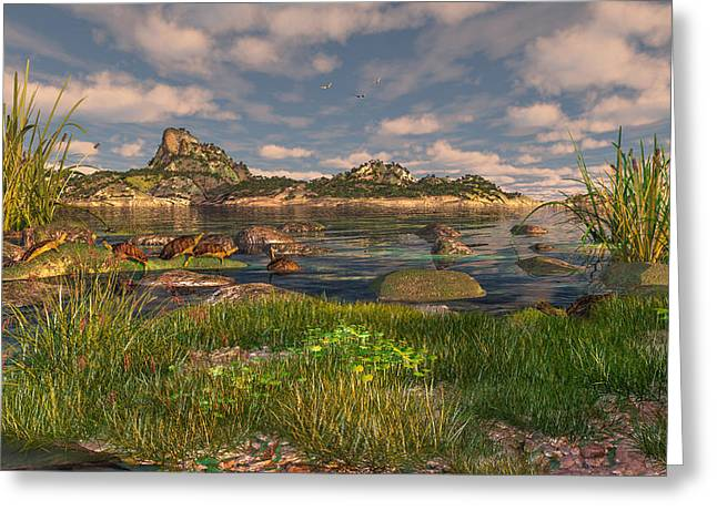 Turtle Cove Greeting Card by Mary Almond