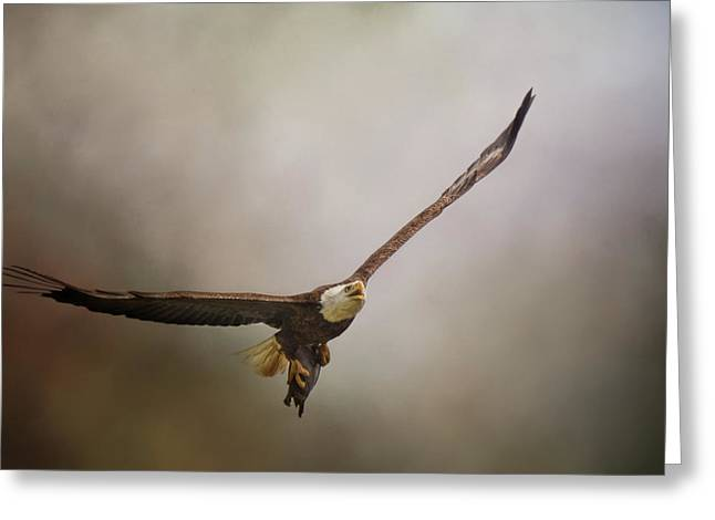 Turtle Delivery Bald Eagle Art Greeting Card