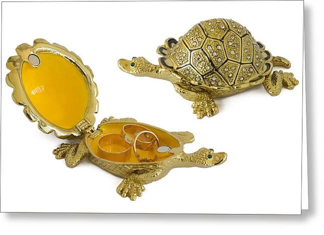 Turtle - Metal  Box For Jewelry Greeting Card by Aleksandr Volkov