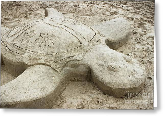 Turtle Time Sand Sculpture Greeting Card by Colleen Kammerer