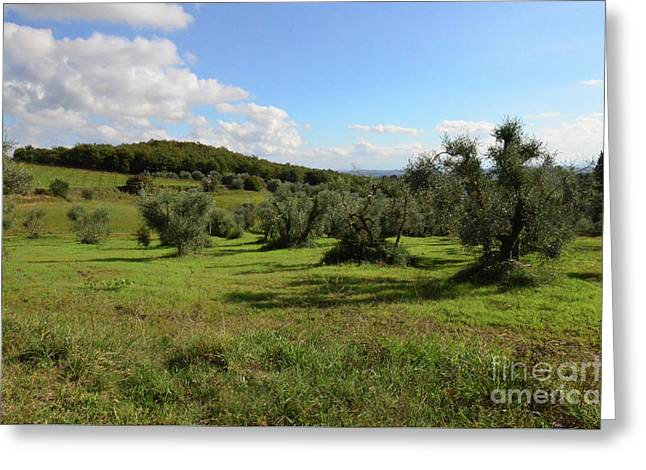 Tuscan Countryside In Italy Greeting Card by DejaVu Designs