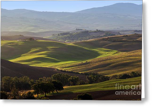 Tuscan Farm House, Vineyard, Green Hills Greeting Card