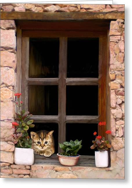 Greeting Card featuring the digital art Tuscan Kitten In The Window by Bob Nolin