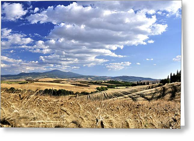 Tuscan Landscape With Cornfield Greeting Card