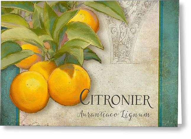 Tuscan Orange Tree - Citronier Aurantiaco Lignum Vintage Greeting Card