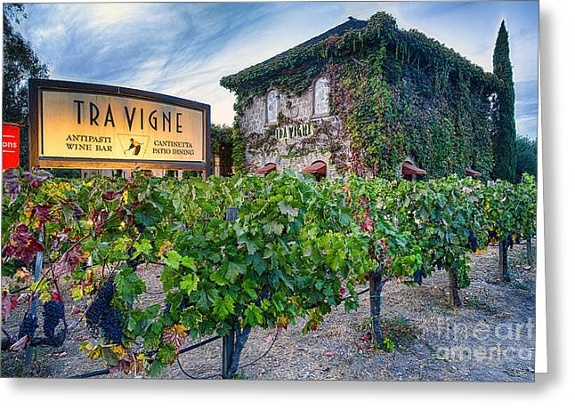 Tuscan Style Building In A Vineyard Greeting Card by George Oze