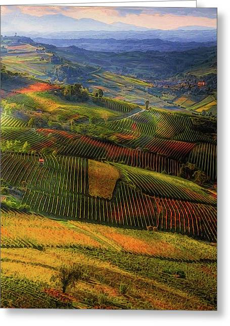 Tuscany, Italian Wineyards  Greeting Card