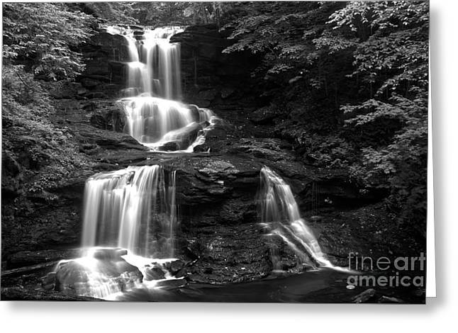 Tuscarora Falls Black And White Landscape Greeting Card by Adam Jewell