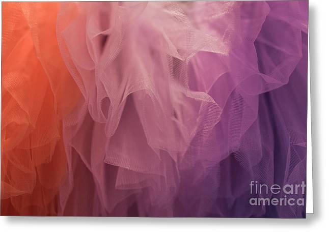 Tutu Colors Greeting Card by Lynn Sprowl