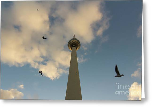 Tv Tower Or Fernsehturm With Birds At Sunset, Berlin, Germany Greeting Card
