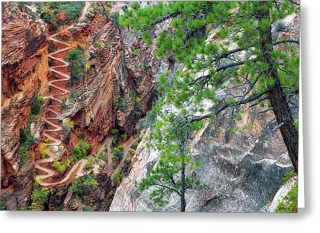 Twenty One Steep Switchbacks Known As Walter's Wiggles In Utah's Zion National Park. Greeting Card