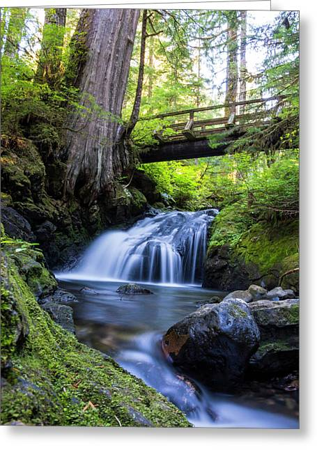 Twentytwo Creek Greeting Card by Pelo Blanco Photo