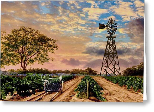 Twilight At The Vineyard Greeting Card