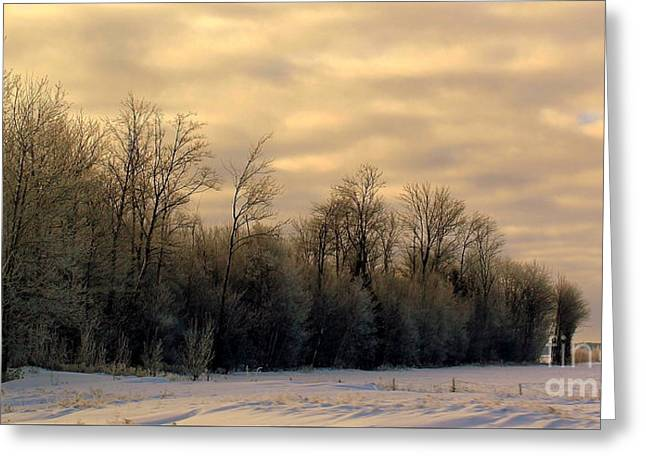 Twilight Greeting Card by Elfriede Fulda