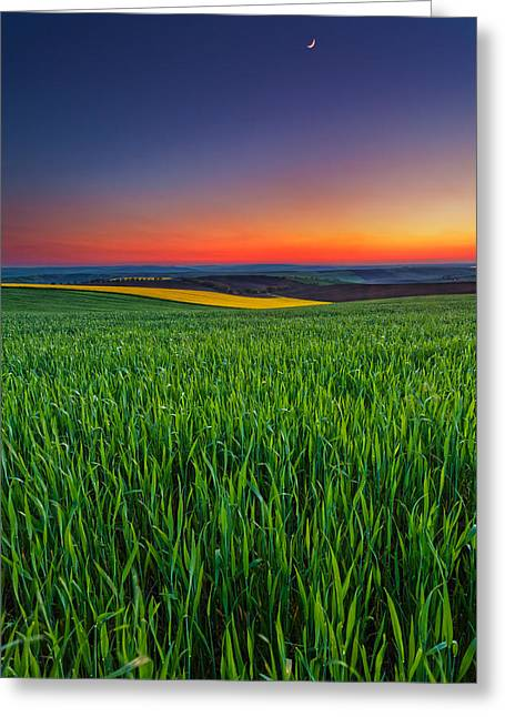 Twilight Fields Greeting Card by Evgeni Dinev