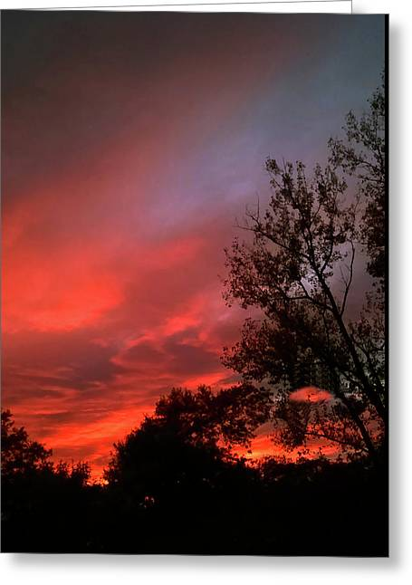 Twilight Fire Greeting Card