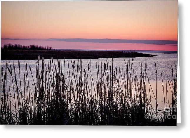 Twilight In West Channel  Greeting Card by Lisa Killins