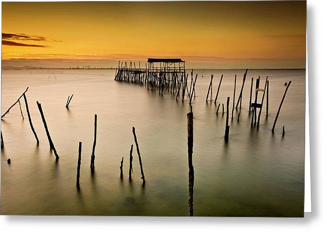 Greeting Card featuring the photograph Twilight by Jorge Maia
