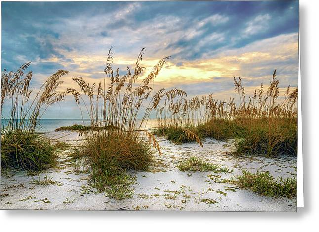 Twilight Sea Oats Greeting Card