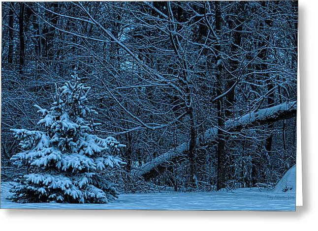 Twilight Snow Greeting Card by Trey Foerster