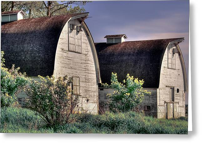 Twin Barns, Nisqually, Wa Greeting Card by Greg Sigrist