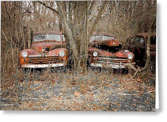 Twin Fords Greeting Card