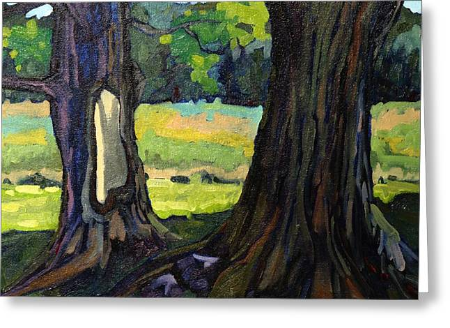 Twin Maples Greeting Card by Phil Chadwick