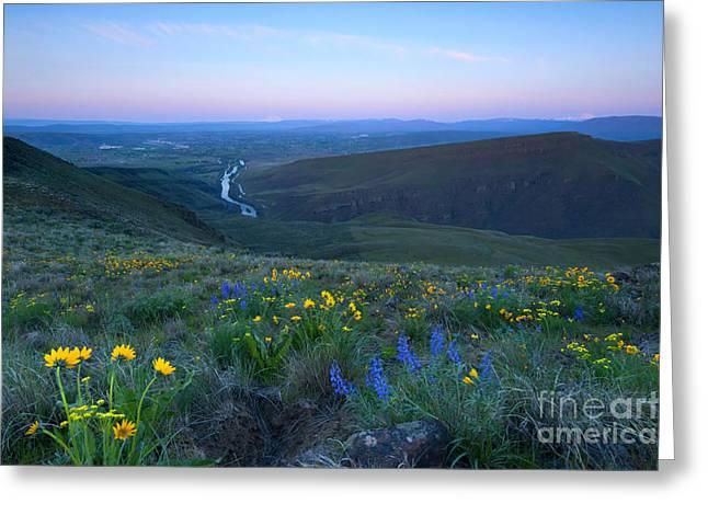Twin Peaks Sunrise Greeting Card by Mike Dawson