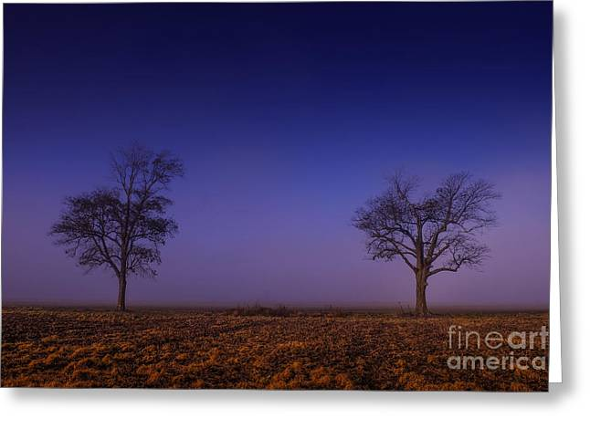 Greeting Card featuring the photograph Twin Trees In The Mississippi Delta by T Lowry Wilson
