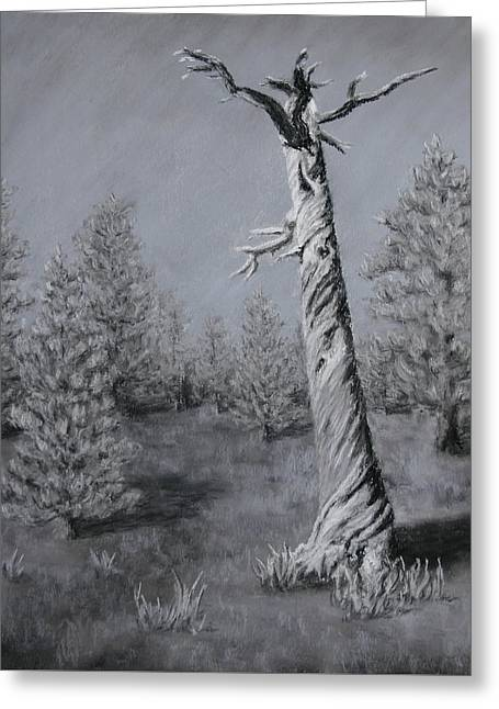 Greeting Card featuring the painting Twisted by Nancy Jolley