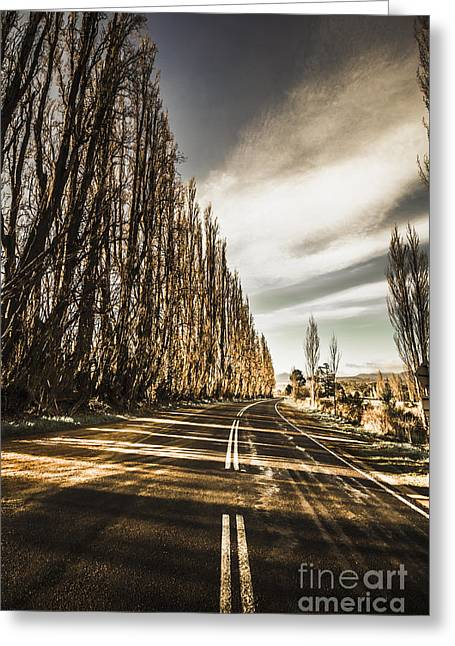 Twisted Roads And Dead Trees Greeting Card by Jorgo Photography - Wall Art Gallery