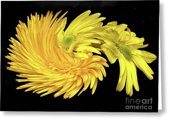 Greeting Card featuring the digital art Twisted Yellow Daisies by Merton Allen