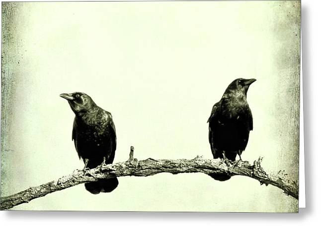 Two Birds One Branch Texture Square Greeting Card