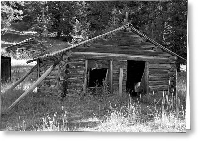 Two Cabins One Outhouse Greeting Card by Richard Rizzo