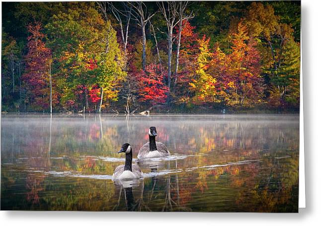 Two Canadian Geese Swimming In Autumn Greeting Card