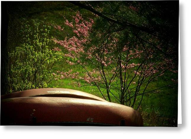 Canoe Greeting Cards - Two Canoes Greeting Card by Michael L Kimble