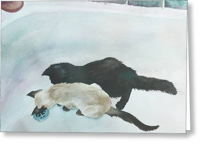 Two Cats In A Tub Greeting Card