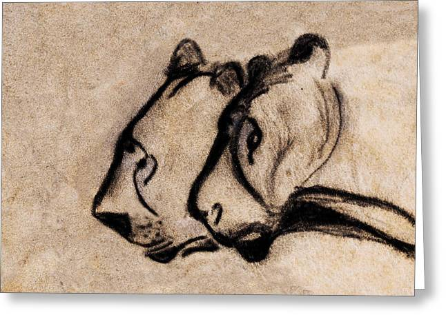 Two Chauvet Cave Lions - Clear Version Greeting Card
