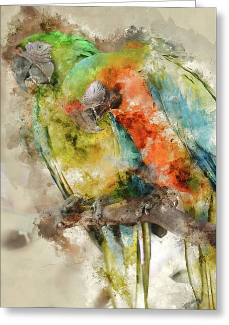 Two Colorful Macaws Digital Watercolor On Photograph Greeting Card by Brandon Bourdages